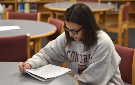 Sophomore Rachel Jacklin studies history in the library.