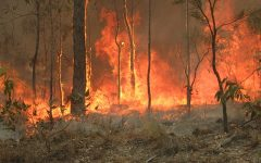 How Australian fires are hurting Aboriginal people